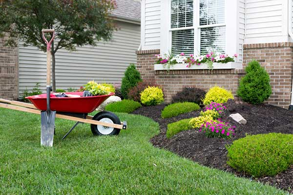 Property Maintenance including planting, edging garden and a freshly cut lawn